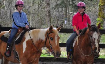 Обучение верховой езде в Московской области, прокат лошадей в Подмосковье, обучение верховой езде в Подмосковье, покататься на лошадях в Подмосковье;