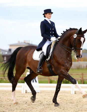 Бушина Лариса, постой лошадей в Московской области, прокат лошадей в Подмосковье, обучение верховой езде в Подмосковье, покататься на лошадях в Подмосковье;