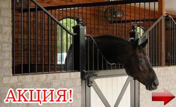 Постой лошадей в Московской области, прокат лошадей в Подмосковье, обучение верховой езде в Подмосковье, покататься на лошадях в Подмосковье;