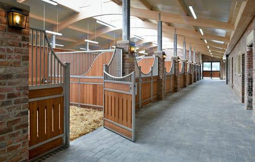 обустроить конюшню, постой лошадей в Московской области, прокат лошадей в Подмосковье, обучение верховой езде в Подмосковье, покататься на лошадях в Подмосковье