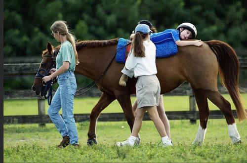 иппотерапия, постой лошадей в Подмосковье, конюшня, аренда денников для лошадей, прокат лошадей в Подмосковье, уроки верховой езды, обучение верховой езде в Подмосковье, покататься на лошадях в Подмосковье, конные прогулки, прогулки на лошадях