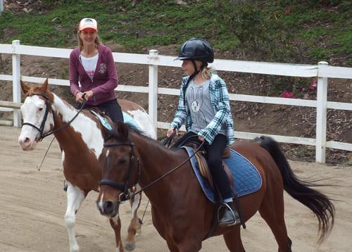 уроки верховой езды, постой лошадей в Московской области, прокат лошадей в Подмосковье, уроки верховой езды, обучение верховой езде в Подмосковье, покататься на лошадях в Подмосковье