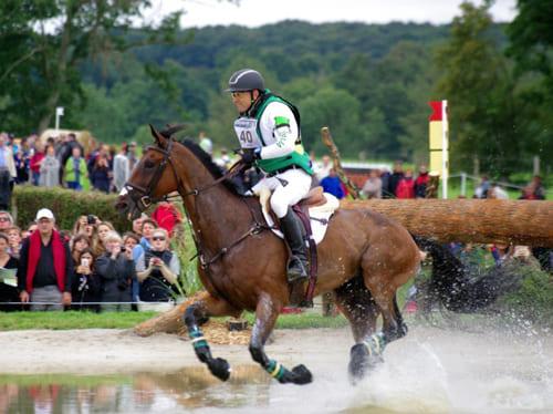конное троеборье, постой для лошадей в Подмосковье, конюшня, аренда денников для лошадей, прокат лошадей в Подмосковье, уроки верховой езды, покататься на лошадях в Подмосковье, конные прогулки, прогулки на лошадях