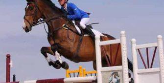 конкур – вид конного спорта, постой для лошадей в Подмосковье, конюшня, аренда денников для лошадей, прокат лошадей в Подмосковье, уроки верховой езды, покататься на лошадях в Подмосковье, конные прогулки, прогулки на лошадях
