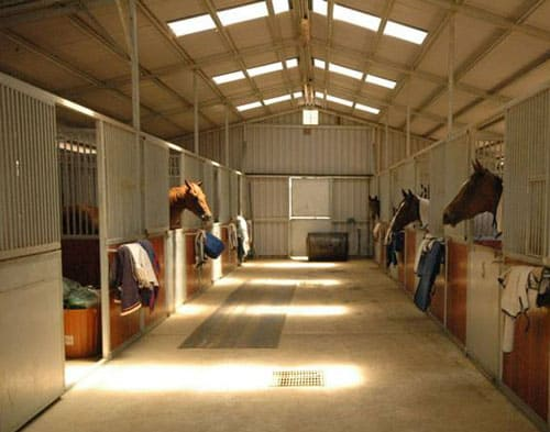 требования к конюшне, постой для лошадей в Подмосковье, конюшня, аренда денников для лошадей, прокат лошадей в Подмосковье, уроки верховой езды, покататься на лошадях в Подмосковье, конные прогулки, прогулки на лошадях
