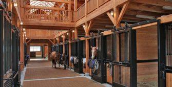 постой для лошадей в Подмосковье, конюшня, аренда денников для лошадей, прокат лошадей в Подмосковье, уроки верховой езды, покататься на лошадях в Подмосковье, конные прогулки, прогулки на лошадях
