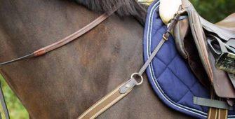 конная амуниция, постой для лошадей в Подмосковье, конюшня, аренда денников для лошадей, прокат лошадей в Подмосковье, уроки верховой езды, покататься на лошадях в Подмосковье, конные прогулки, прогулки на лошадях
