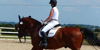 объездка лошади, постой для лошадей в Подмосковье, конюшня, аренда денников для лошадей, прокат лошадей в Подмосковье, уроки верховой езды, покататься на лошадях в Подмосковье, конные прогулки, прогулки на лошадях