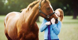 контактировать с лошадью, постой для лошадей в Подмосковье, конюшня, аренда денников для лошадей, прокат лошадей в Подмосковье, уроки верховой езды, покататься на лошадях в Подмосковье, конные прогулки, прогулки на лошадях