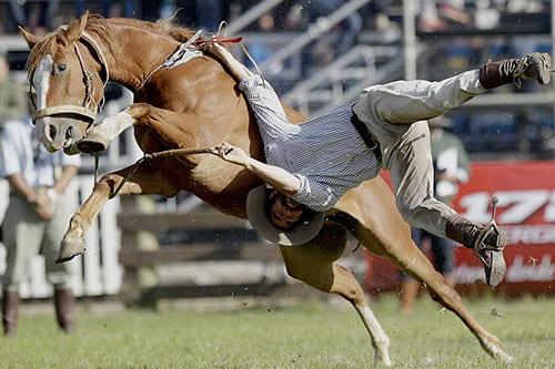 отучить лошадь брыкаться, постой для лошадей в Подмосковье, конюшня, аренда денников для лошадей, прокат лошадей в Подмосковье, уроки верховой езды, покататься на лошадях в Подмосковье, конные прогулки, прогулки на лошад