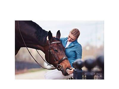 правила безопасности при общении с лошадью, постой для лошадей в Подмосковье, конюшня, аренда денников для лошадей, прокат лошадей в Подмосковье, уроки верховой езды, покататься на лошадях в Подмосковье, конные прогулки, прогулки на лошадях в Подмосковье