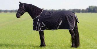 как выбрать попону, постой для лошадей в Подмосковье, конюшня, аренда денников для лошадей, прокат лошадей в Подмосковье, уроки верховой езды, покататься на лошадях в Подмосковье, конные прогулки, прогулки на лошадях в Подмосковье